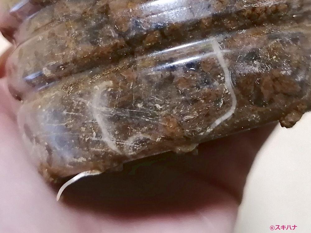 発根したヘリオトロープの挿し木